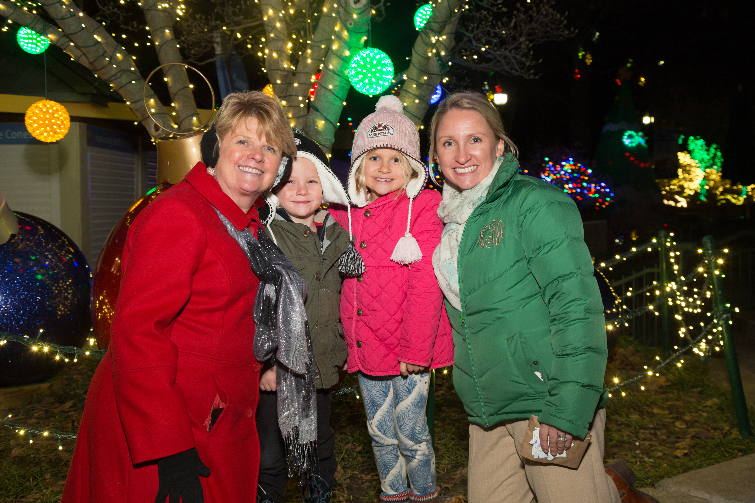 St Louis Christmas Lights 2019 Hours & Prices | Saint Louis Zoo