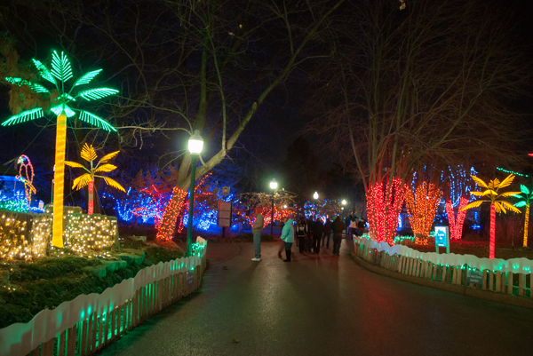 the zoo will close to the public at 4 pm each night of wild lights at this time all pathways exhibits and attractions will close - Christmas Lights At The Zoo
