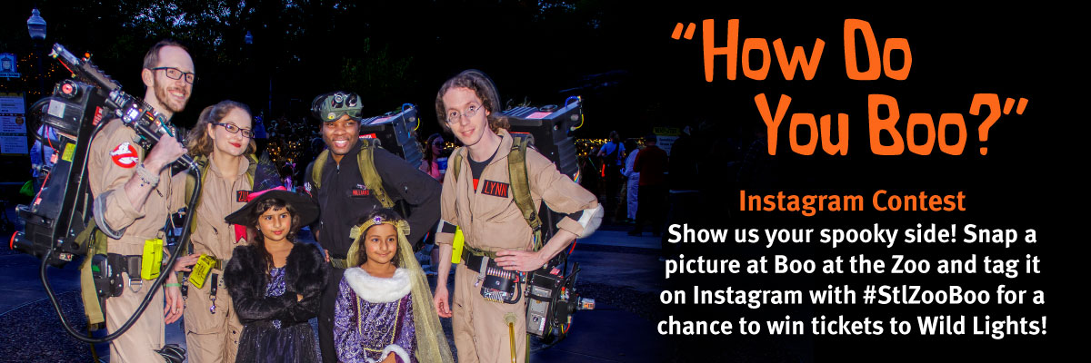 Look for the Greater St. Louis Ghostbusters at select nights of Boo at the Zoo!