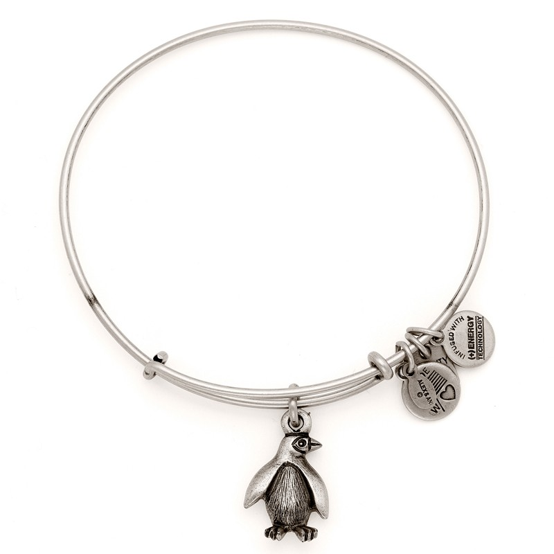 Alex And Ani Charity By Design Penguin Charm In Silver