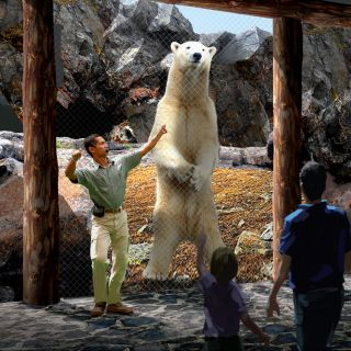Polar Bear Point renderings_hi-res