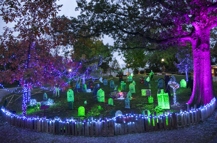 Christmas Lights In St Louis 2020 Calendar of Events | Saint Louis Zoo