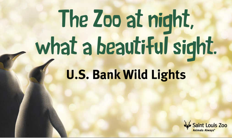 A look at U.S. Bank Wild Lights 2019
