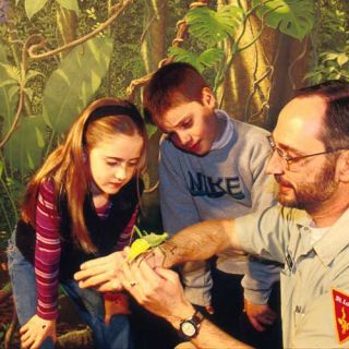 Insectarium visitors