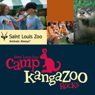 Camp KangaZoo Rocks CD