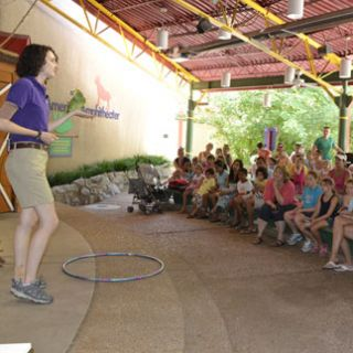 Children's Zoo Show