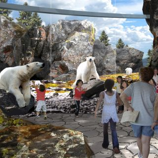 Polar-Bear-Point_Bear-viewing-rendering_hi-res