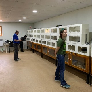 Reptile and amphibian room at Armenian Conservation Breeding Center