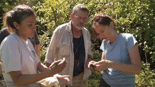 Mariana Avifauna Conservation Program video from Toledo Zoo