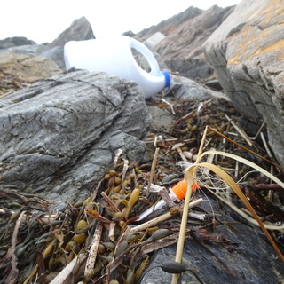 Syringe and bleach bottle are common trash form the mainland (York) one mile away.