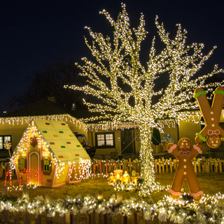 Wild Lights Gingerbread Village